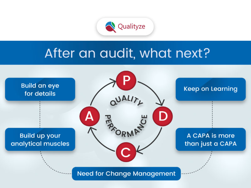 After an Audit, What Next?