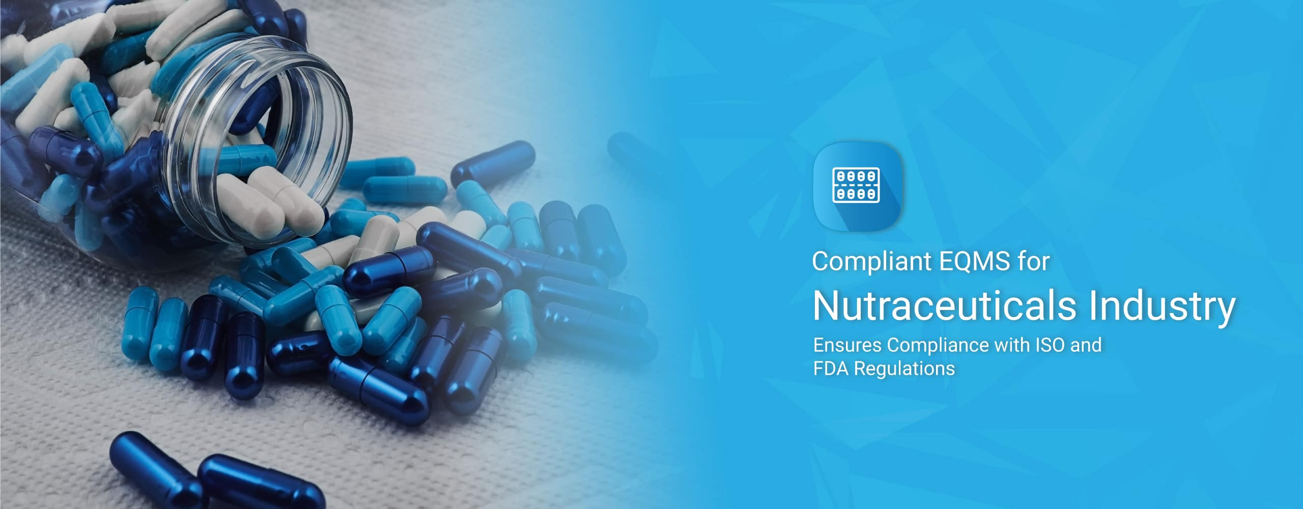 Quality Management System for Nutraceuticals Industry